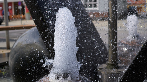 Wasserpilz