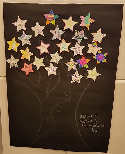 Matariki wishing stars, Redwood Library