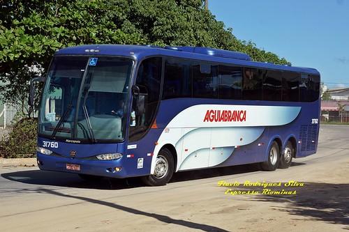 AGUIA BRANCA 31760 - VITORIA x SALVADOR