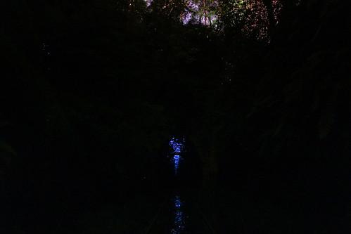 Reflecting Glow