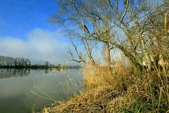 Un matin de Garonne... - Photo of Portets