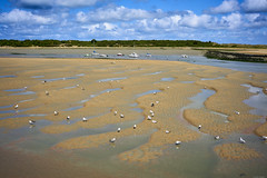 Low tide in Dives-sur-Mer - Photo of Auberville
