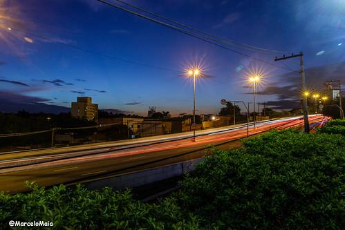 Lines at night