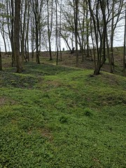 View from the bottom of the Hawthorn Mine Crater