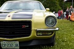 Mustang Killer - Photo of Seraincourt