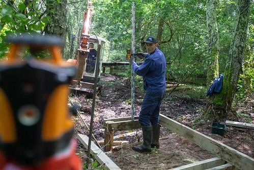 Tronçon 3 : Création d'un caillebotis de 350m de long, en ossature chêne et robinier