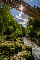 Le Pont sur la Bienne