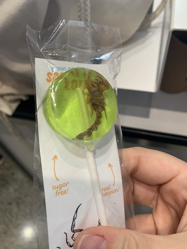 Scorpion in a lollipop