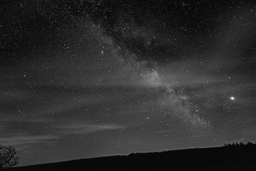 A Vast Sea of Stars