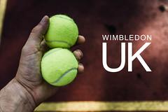 "Mann hält in seiner Hand zwei Tennisbälle, neben der Aufschrift ""Wimbledon UK"", dem Namen der Tennis-Championships in London"