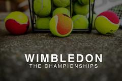 """Mehrfarbige Tennisbälle & der Text """"Wimbledon The Championships"""" - Wimbledon Meisterschaft im Tennis - die jährliche Sportveranstaltung in London"""