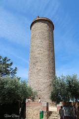 66 Perpignan - Château-Roussillon - Photo of Saint-Laurent-de-la-Salanque