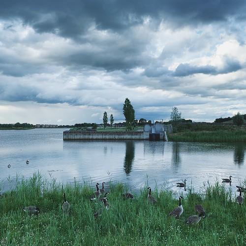 Waterdonken / Breda