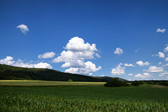Ombre et lumière - Photo of Forstheim