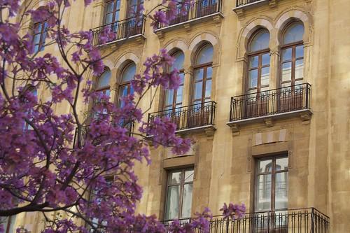 Detall de l'Ajuntament de Beirut, Líban.