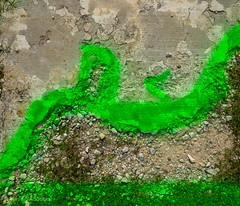 Sidewalk with green paint