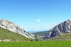 France, la Clape & la vigne entre Narbonne et Narbonne Plage - Photo of Fleury