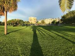 Long shadows in the morning light