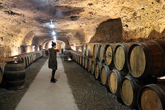 2019 Tours Wineries - 17