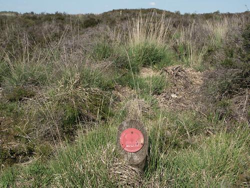 Archeologisch monument