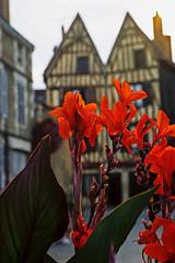 VA3-10+.jpg - Photo of Auxerre