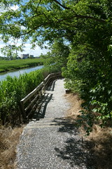 Norman J Levy Park and Preserve (3)