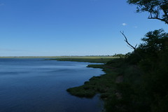 Norman J Levy Park and Preserve (7)