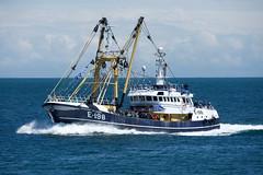 Brixham Trawler Race 2019