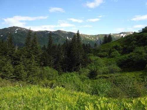 Peaks east of Mt. Juneau