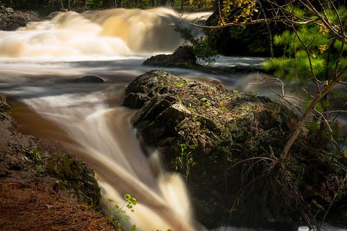 Amnicon River State Park 20190526-_DSC2867