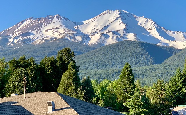 View from my window in Mount Shasta, California — like Pompeii at the foot of Mount Vesuvius.