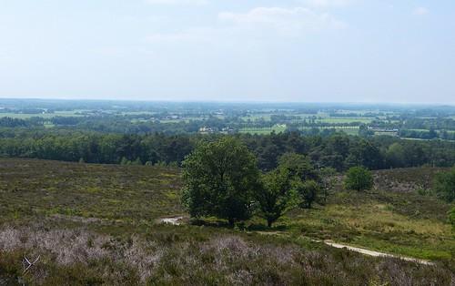 View from Archemerberg - nature area Lemelerberg