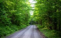 I love a dirt road