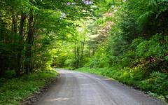 Copp Hollow Road
