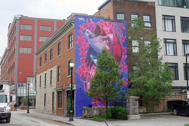 New mural by Werc Hughson St. N. (2)
