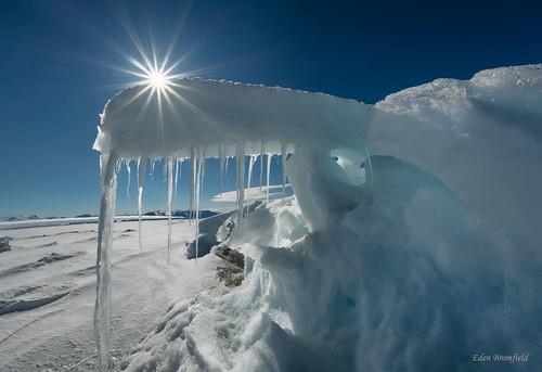 Midnight Sun-burst and Arctic Sea Ice