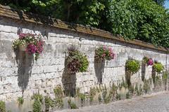 Hanging baskets on The Rue du Clape en Bas - Photo of Campigneulles-les-Grandes