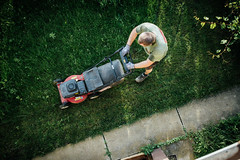A professional gardener mowing a lawn and arranging a garden