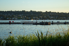 Gene Coulon Park looking towards Skyway