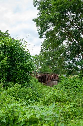 Pont des Américains (Horbourg-Wihr, France)-109