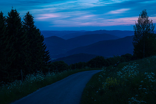 Towards the blue mountains