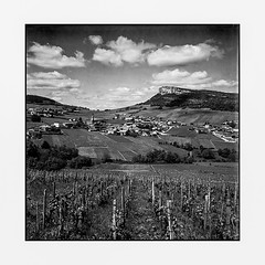 panorama on vineyards • solutre, burgundy • 2016