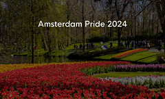 "Blooming red and yellow tulips in Keukenhof garden with visitors, next to title  ""Amsterdam Pride 2024"""