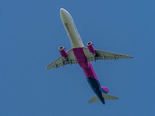Airbus A321-231 - HA-LTF - Wizz Air - Nijnsel - Noord-Brabant - NL