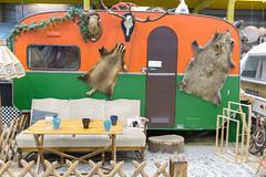 Retro-Wohnwagen mit Jagdreliquien, einer Sofa und einer Lampe im Vordergrund in BaseCamp Hostel in Bonn