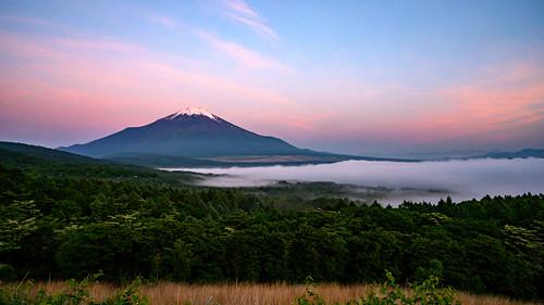 June Fuji at dawn