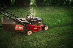 A mower in the garden during mowing
