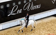 Léa et Diamente à l'Échauffement - Photo of Nîmes