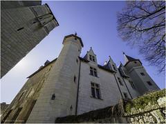 Château de Montreuil-Bellay - Photo of Montreuil-Bellay