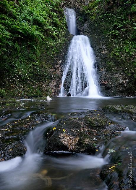 Waterfall Swirls